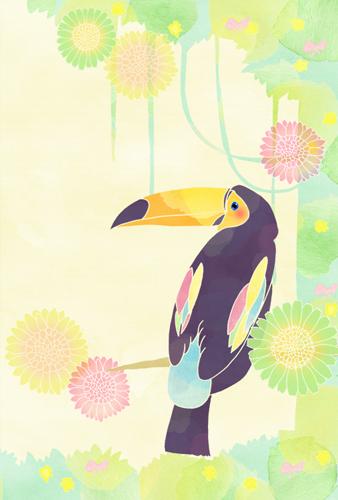 illustration-oohashi