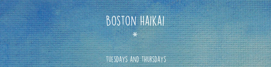 Boston Haikai Updates Tuesdays and Thursdays
