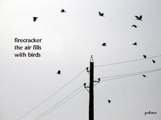 birds-by-polona-oblak.jpg