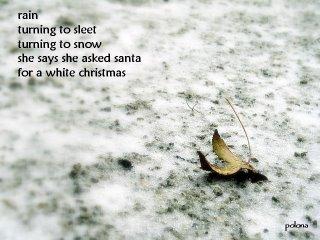White christmas by Polona Oblak