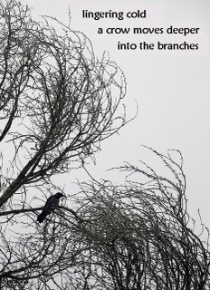 Crows+trees by Polona Oblak