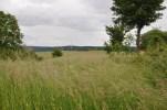 Drees field