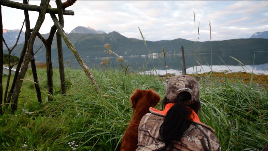 Haill&Knall TV: Gåsejakt med fuglehund