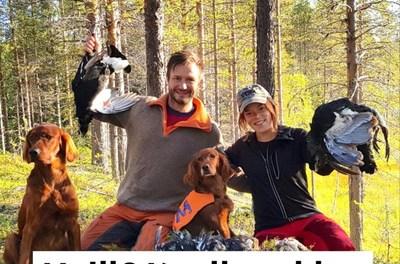 Haill og Knall-podden: Ikke prat med mannen i munnen, støkkjakt vs jakt med hund og smakstest