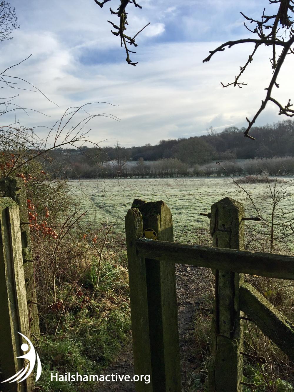 Cuckoo Trail cross country