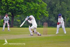 Hailsham Cricket Club in action
