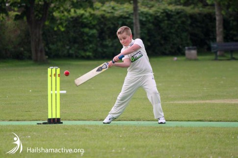 Hailsham cricket club-junior