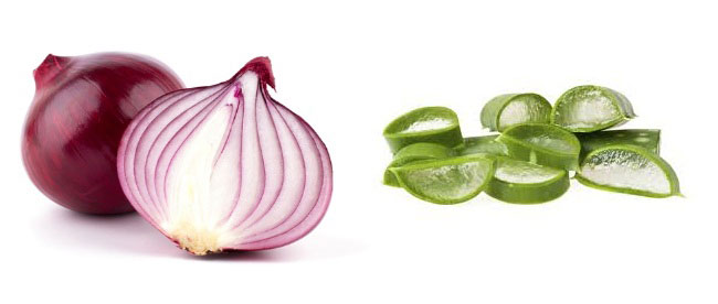 Aloe Vera And Onions For Hair