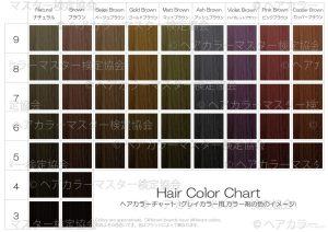 ヘアカラーチャート_グレイカラー_カラー剤の色のイメージ
