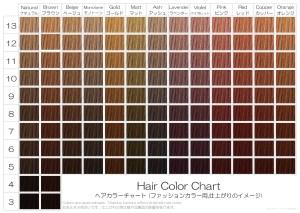 美容室用ヘアカラーチャートA4_ファッションカラー(おしゃれ染め)
