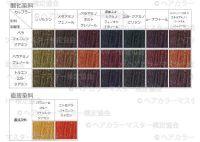 ヘアカラー酸化染料・直接染料チャート