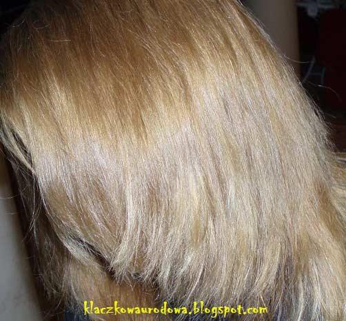 Garnier Olia 813 Champagne Blonde Hair Colar And Cut