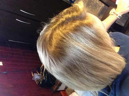 Garnier Olia 93 Light Blonde Hair Colar And Cut Style