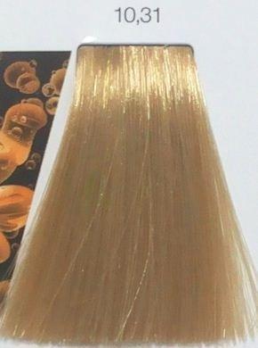 LOreal Noa 1031 Lightest Golden Ash Blonde Hair Colar