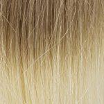 Ombré Blond miel Blond clair