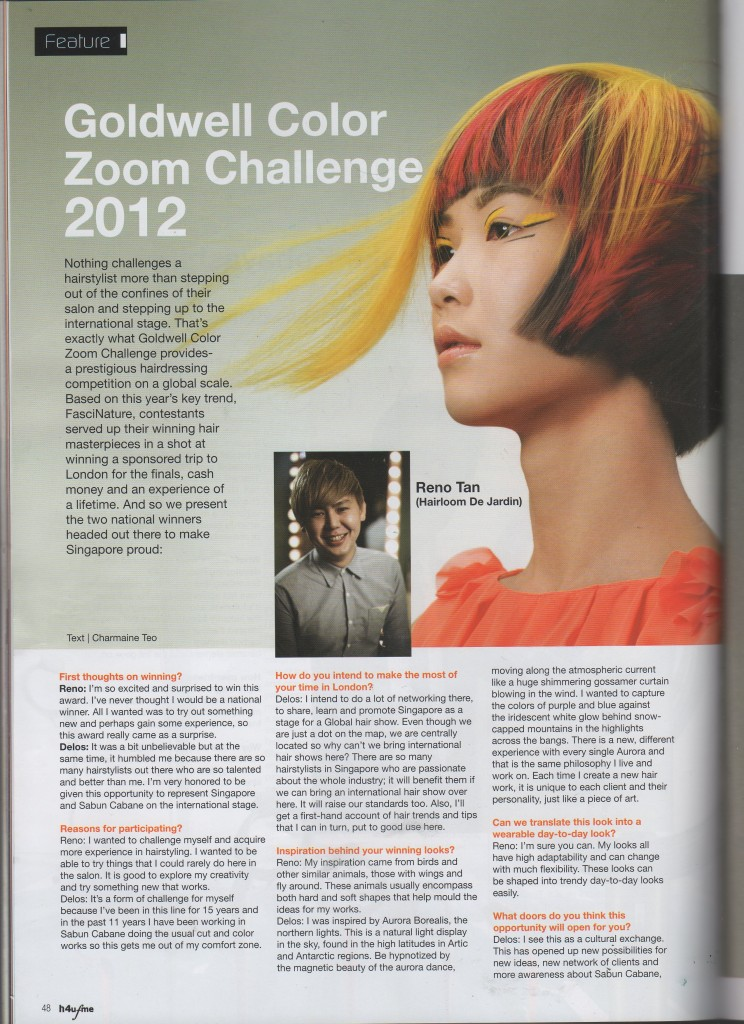 hairloom, goldwell color zoom