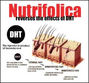 dht-blockers-supplements-for-hair-loss