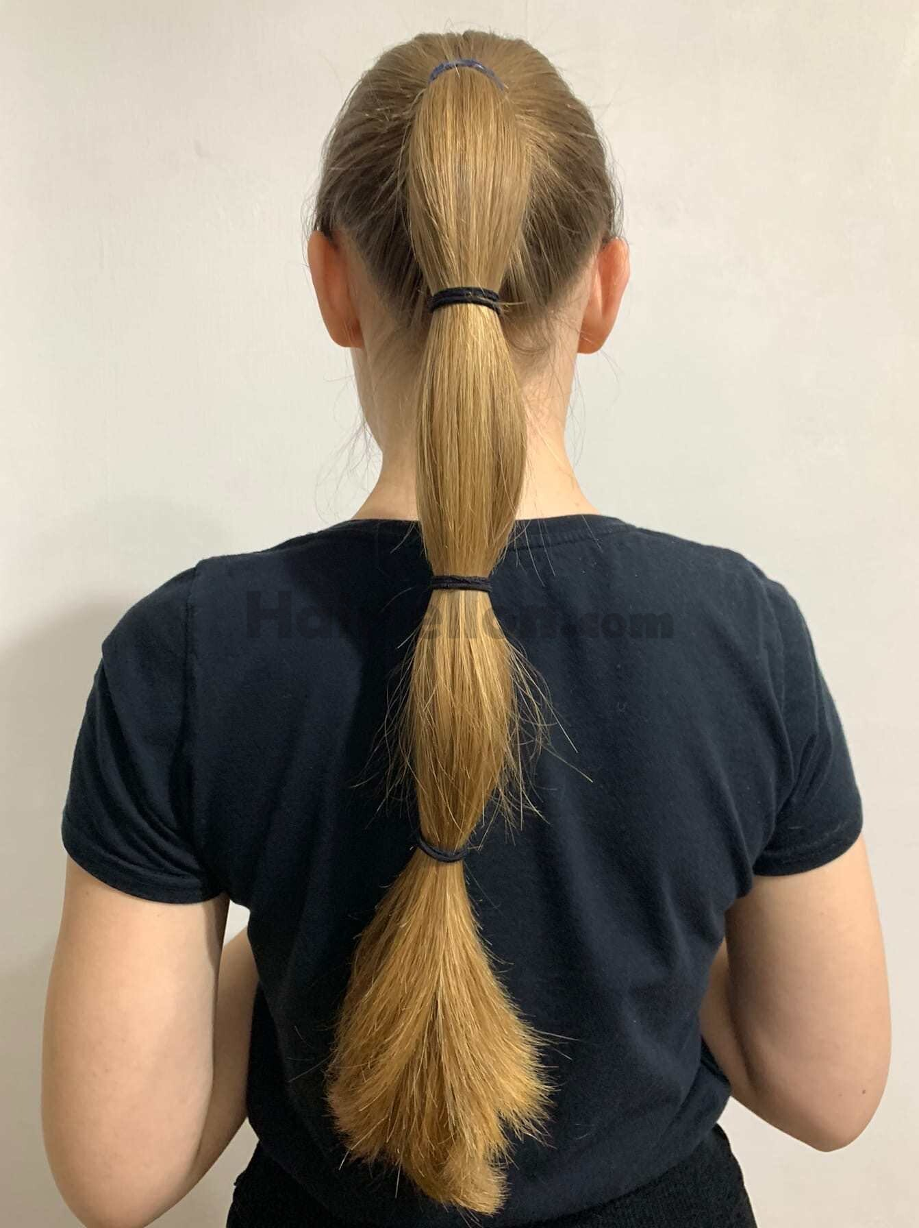 Hair in the ponytail.