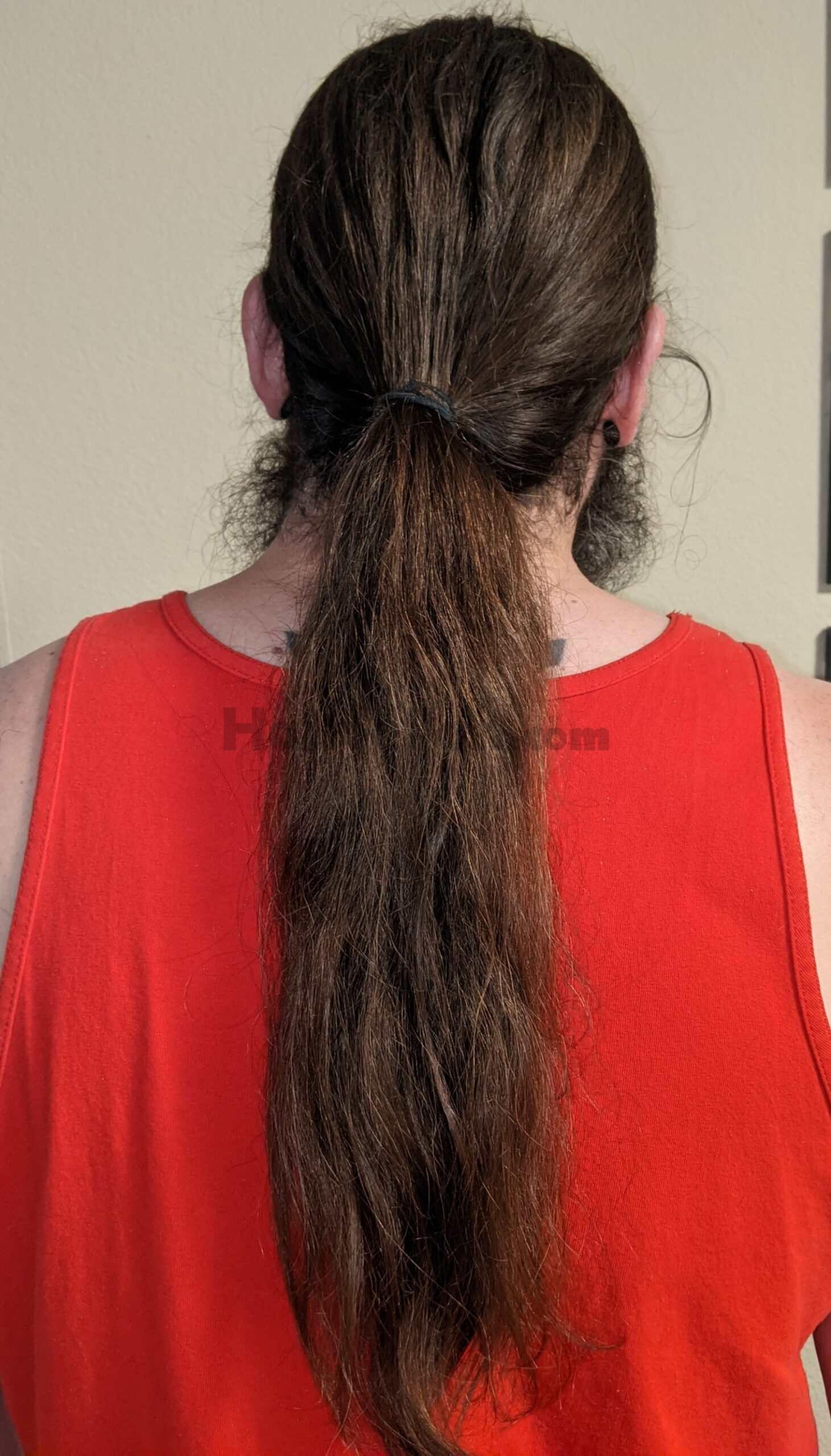 hair_ponytail