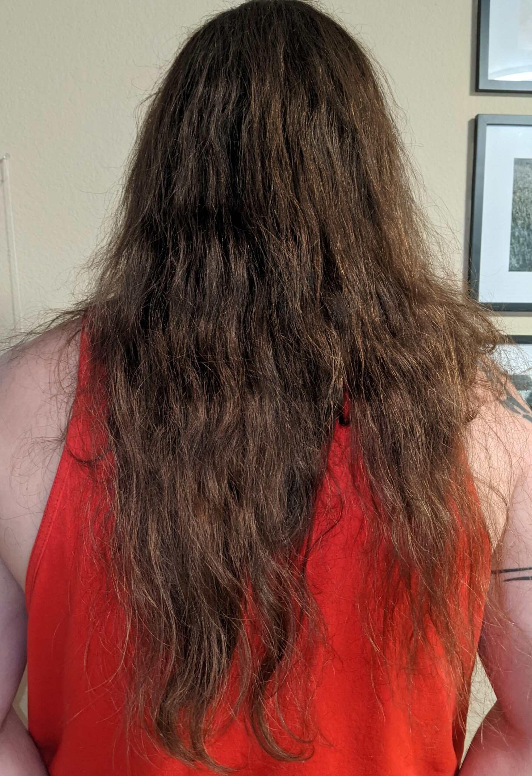hair_no_ponytail