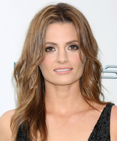 Stana Katic Long Straight Casual Hairstyle Light