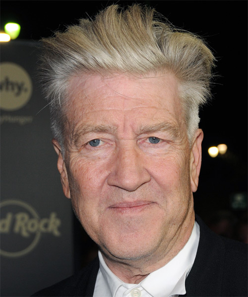 David Lynch Short Straight Formal Hairstyle Light Salt