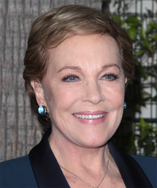 Julie Andrews Casual Short Straight Hairstyle With Side