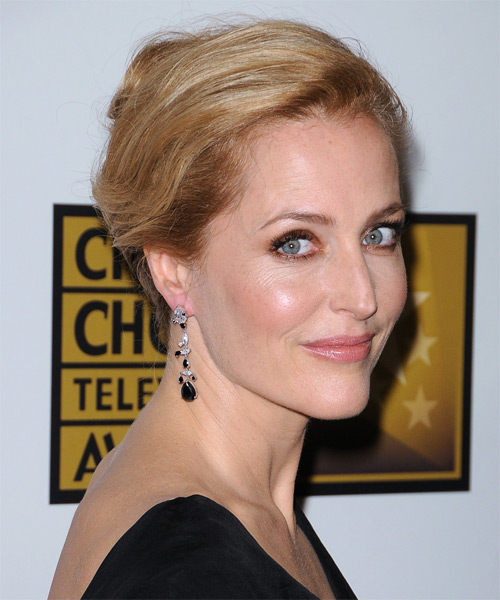 Gillian Anderson Casual Long Straight Updo Hairstyle