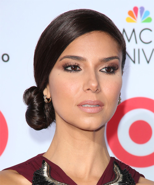 Roselyn Sanchez Formal Long Straight Updo Hairstyle