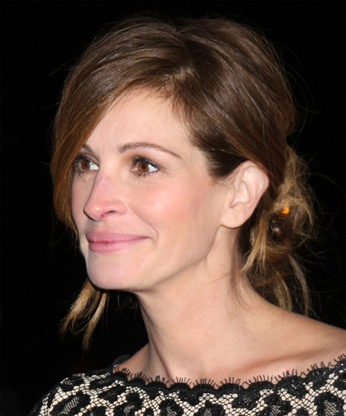 Julia Roberts Long Straight Casual Updo Hairstyle Ash