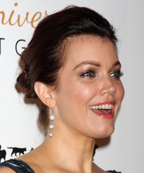 Bellamy Young Long Straight Casual Updo Hairstyle Dark