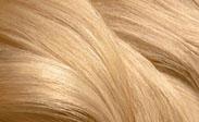 Hair Color Chart: Light Blonde