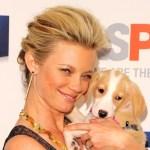 Celebrity Amy Smart French Twist Updo