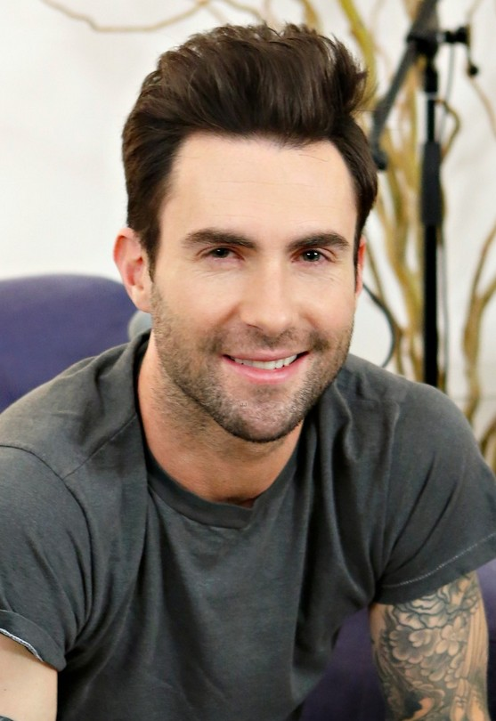 2014 Hairstyles for men from Adam Levine