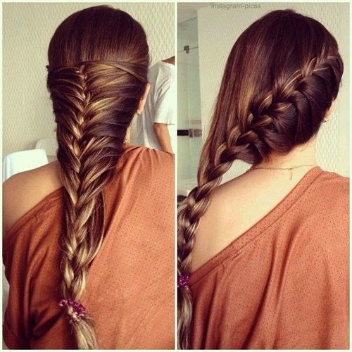 Gorgeous Braided Hairstyles for Girls (15)
