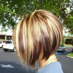 Side View of Inverted Bob with Red Blonde and Brown Highlights