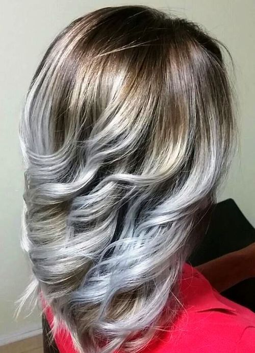 Sliver Highlights and Brown Roots