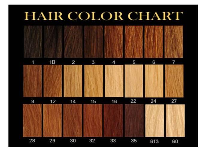 Image Result For Auburn Hair Color Men