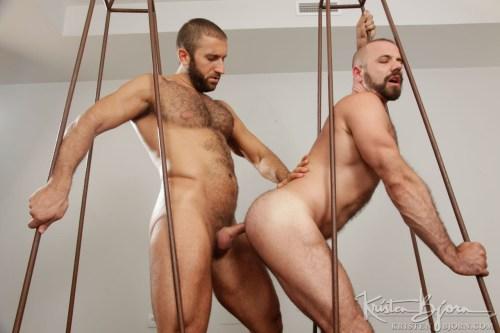 doggy-style-gay-bear