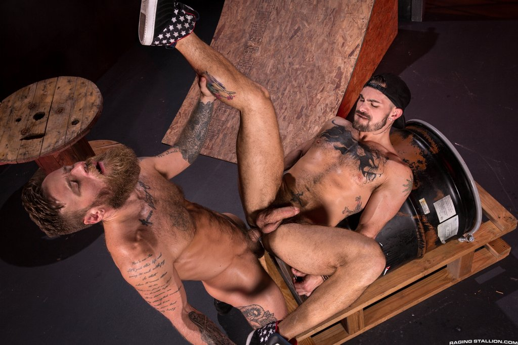 Bearded Stud Hoytt Walker Drills Aarin Asker 02