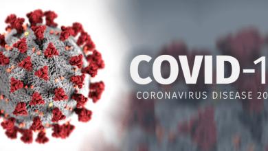 coronavirus credit Texas DSHS Texas.gov 1