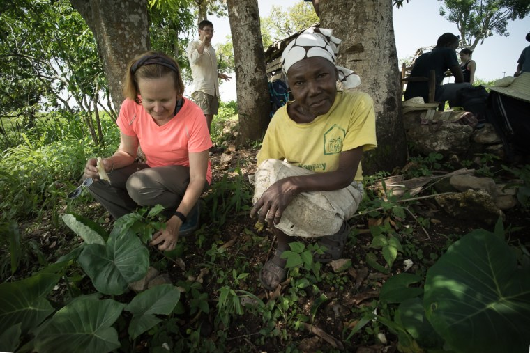 Deborah McGrath and Josephone Exana checking young coffee plants, Bois Jolie, Haiti. May, 2015.
