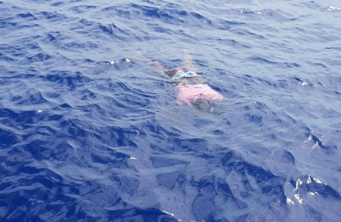 Haïti / Drame Des haïtiens en quête de mieux être continuent  de périr en mer