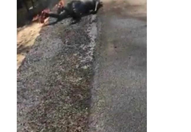 Ouanaminthe: deux personnes brûlées vives en transportant du carburant à moto