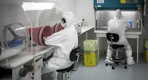 Haïti-Coronavirus: Un 8ème cas testé positif