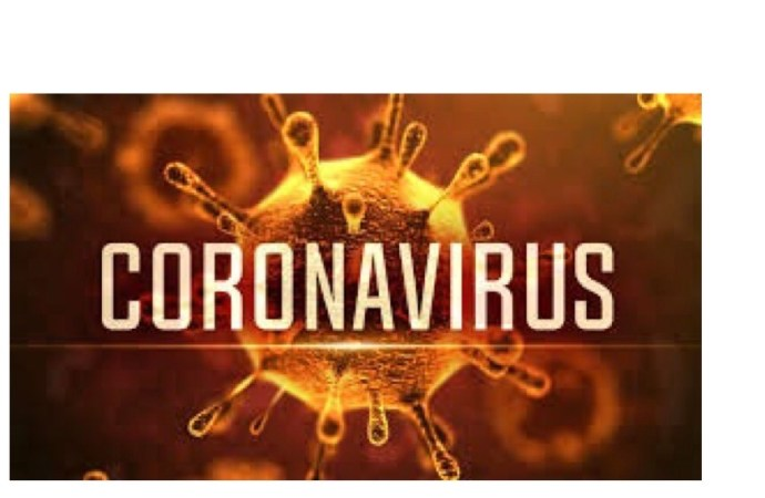 Coronavirus-Prévention: des maires de la zone métropolitaine s'y impliquent