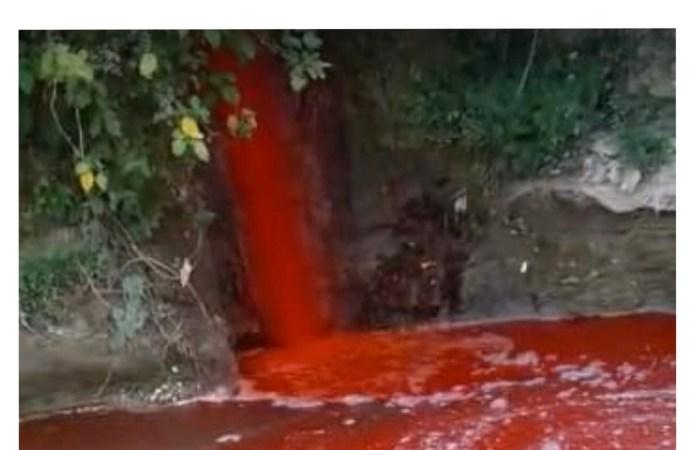 Liquide déversé à la Rivière grise: le gouvernement s'en préoccupe