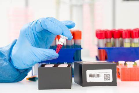 Coronavirus : 7053 cas de contamination révélées, 146 décès, 3877 cas de guérisons