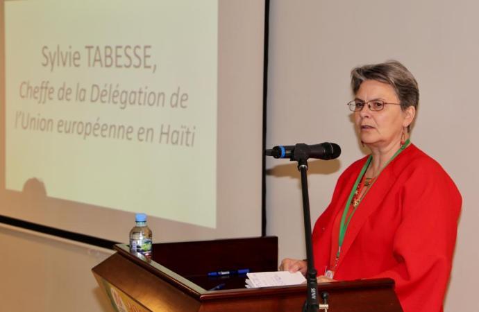 Haïti- Crise: L'UE plaide pour un dialogue inter-haitien