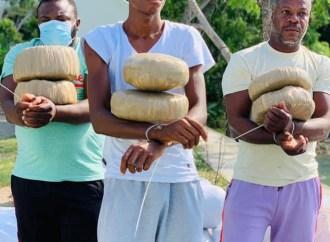 Trafic illicite de stupéfiants : 3 jamaïcains arrêtés, 635 kilos de marijuanas saisis